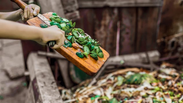 The Best and Worst Foods for Composting
